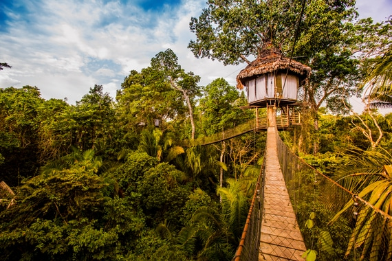 Treehouse Private Vacations