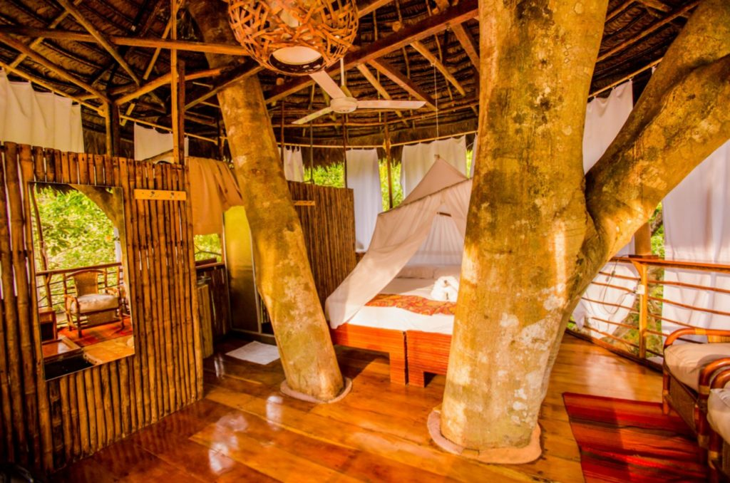 treehouse lodge iquitos